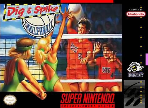 Dig and Spike Vollyball (U)